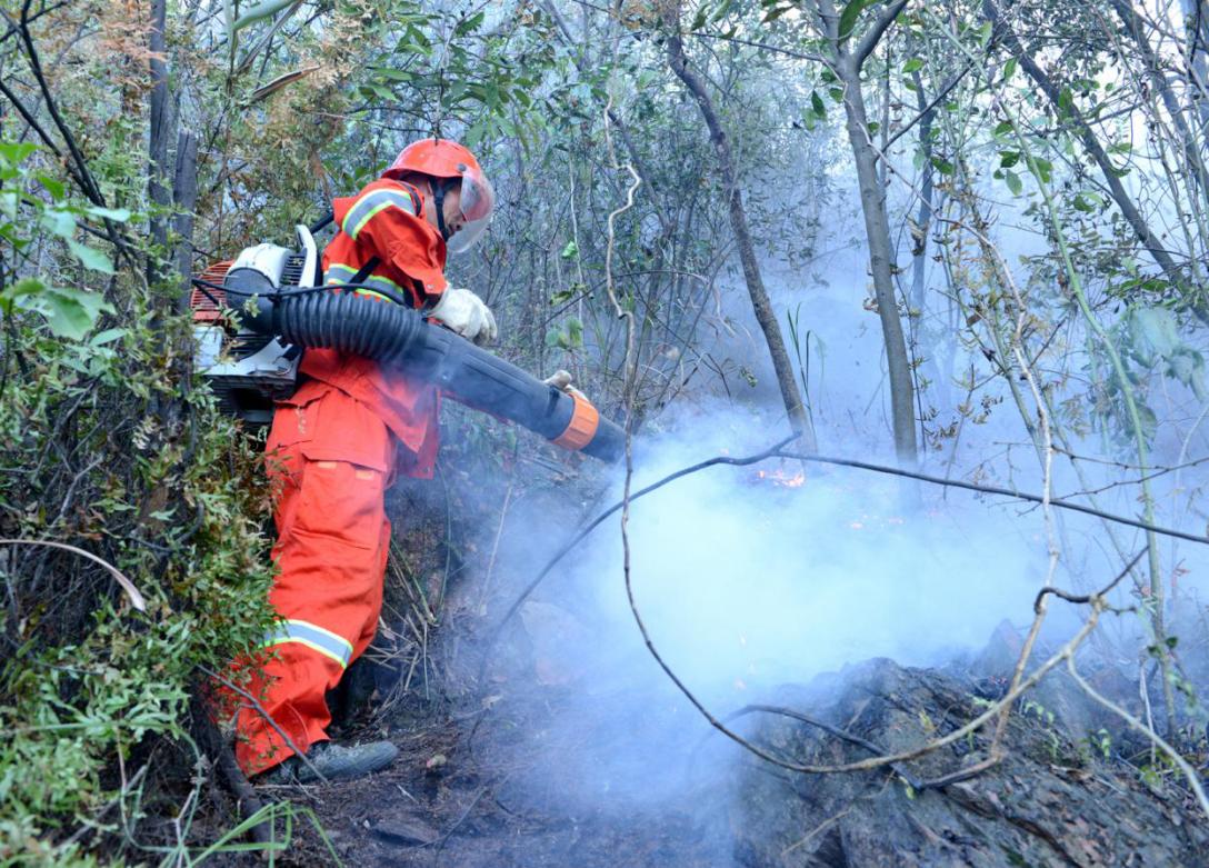 森林消防员在陡峭山坡迅速扑灭火头1.png