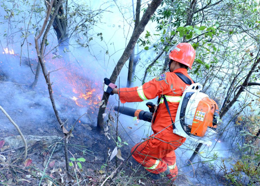 森林消防员在陡峭山坡迅速扑灭火头2.png
