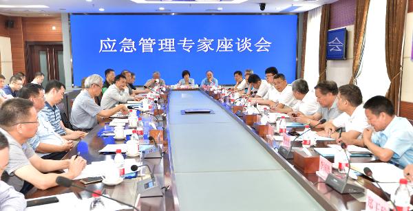 广东省应急管理厅召开应急管理专家座谈会